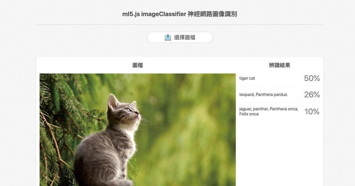 ml5.js 神經網路 開發圖像辨識